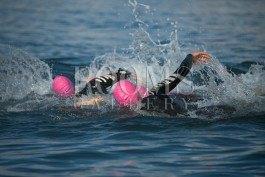 תמונה למשרד אליפות שחייה