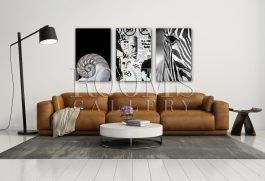 שלישיית תמונות לבית מעל ספת עור חומה