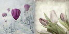 בלונים ופרחים