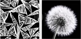 תמונות בשחור לבן עיצוב הסלון והבית