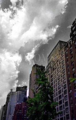 נוף עירוני בשחור לבן