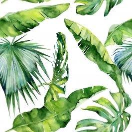הום סטיילינג לבית עם תמונות צמחים מקסימים