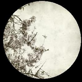 תמונה עגולה של עץ לסלון של הבית